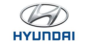 Hyundai considers sourcing EV components locally