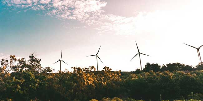 Centre to explore wind energy potential of TN