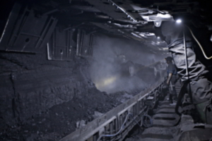 Critical coal